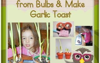 grow-your-own-garlic-leaves-for-toast-eat