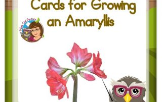 Amaryllis-measure-sequencing-cards free PDF