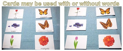 cards-may-be-used-with-or-without-words
