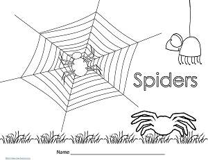 insect-or-spider-playdough-mat