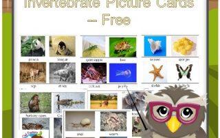 invertebrates-vertebrates-sorting-cards-free-PDF