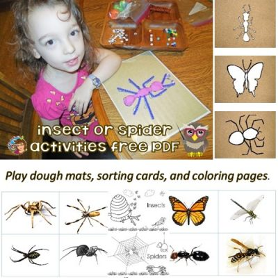 play-dough-mats-insects-spiders-sorting-cards-coloring-pages