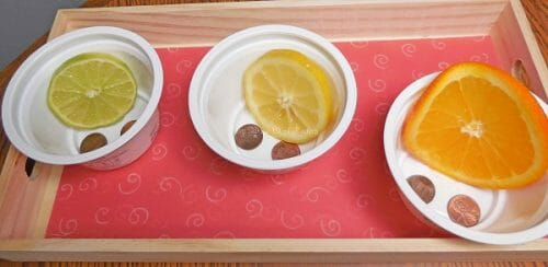 try-placing-fruit-slices-on-pennies