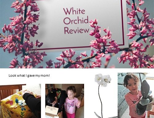 PermaLeaf® White Orchid Review and Free Pre-K Flower PDF