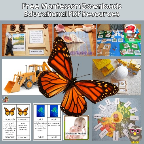 Montessori Instant Resource Downloads