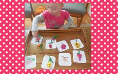 Flower Names 3-part Cards and Matching Freebie