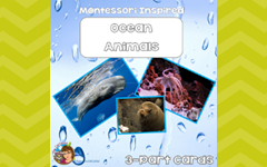 ocean animal free 3 part cards in the free eMember area