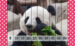 Panda Poses Puzzle and Game Freebie