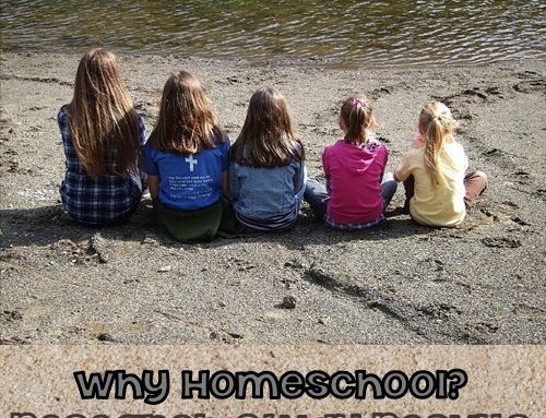 Why People Homeschool Recent Study