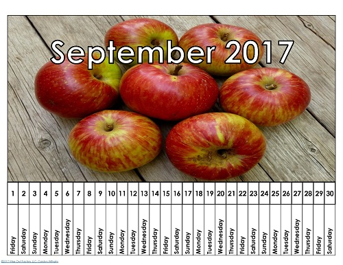 linear-calendar-printable-free-download