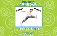 My Body Cards English and French