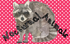 Nocturnal Animals Free Printable