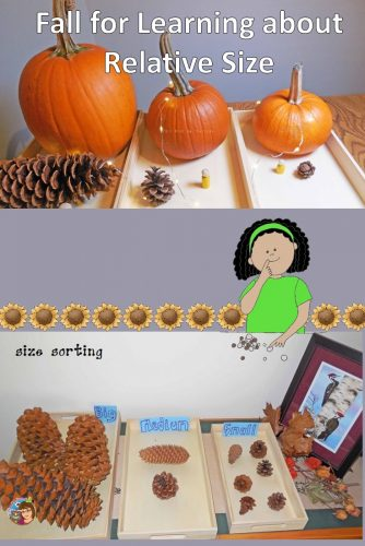 Fall for learning about relative size by allowing children to touch, discover, hold, and work with fall science objects.