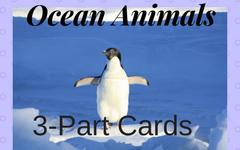 Ocean-animals-3-part-cards-Montessori-free-PDF