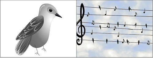 free-Pre-K-and-K-mockingbird-songsequencing