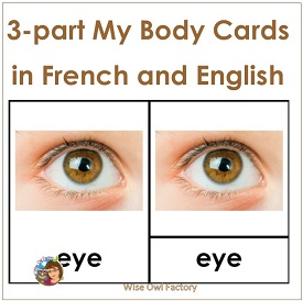 French and English My Body 3-part Cards