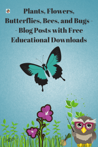 Plants-bugs-bees-flowers-butterflies-blog-post-round-up-freebies-downloads