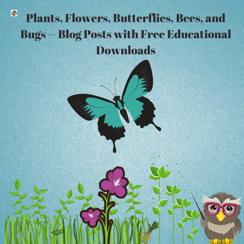 Plants-bugs-bees-flowers-butterflies-blog-post-round-up-freebies