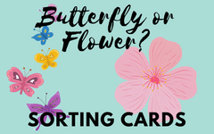 Flower or Butterfly Sorting and Coloring Free PDF