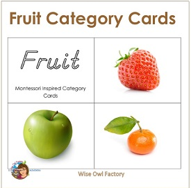 Fruit Montessori Inspired 3-part Cards