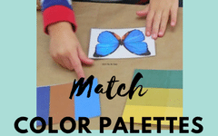 match-color-palettes-butterlies-and-color-choices-free-download