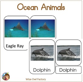 Ocean Creatures 3-part Cards