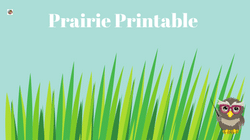 plant-a-pocket-of-prairie-free-printable