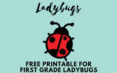 Free Book Companion for First Grade Ladybugs Book