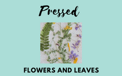 Pressed Flowers and Leaves Project