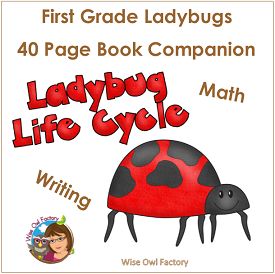 Ladybugs Writing and Math