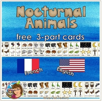 nocturnal-animals-in-French-and-English-3-part-cards