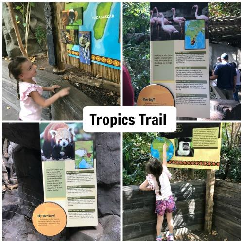 Tropics-Trail-MN-Zoo