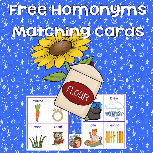 freebie-elem-ed-homonyms-cards-instant-download