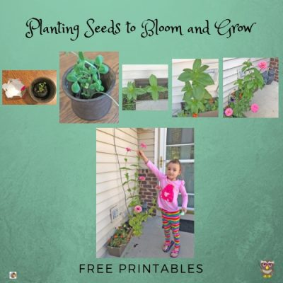 plant-seeds-to-bloom-and-grow-blog-post-with-freebies