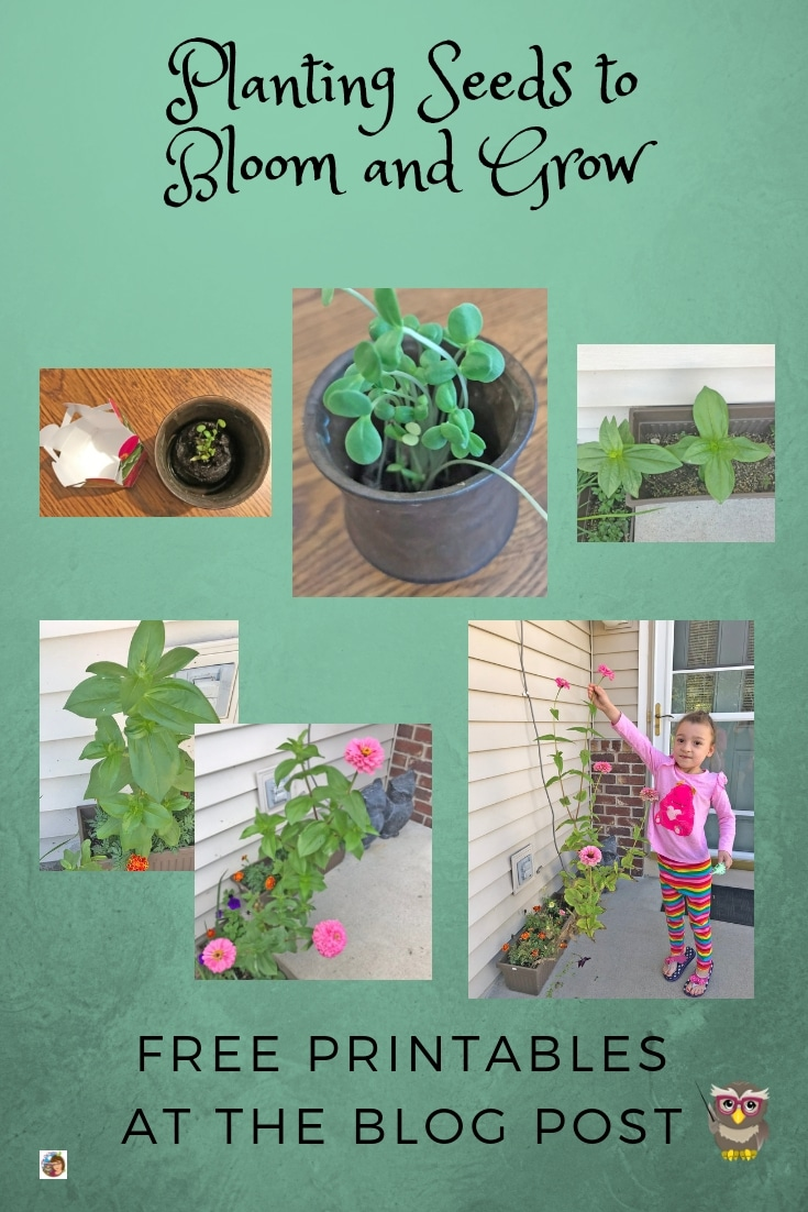 Planting seeds to bloom and grow free journal for Pre-K through grade 2 --- instant download is available at this post