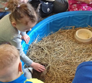 petting-bunnies-at-the-nature-center