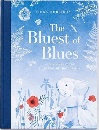 Bluest-of-Blues-picture-book-for-children-art