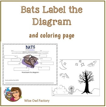 bats-label-the-diagram-and-coloring-page-free-instant-download