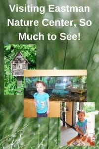 visiting-eastman-nature-center-maple-grove-minnesota-3-rivers-park-district-family-activity