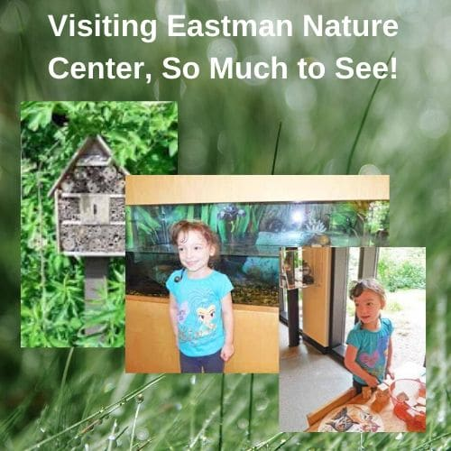 Eastman Nature Center Maple Grove, MN