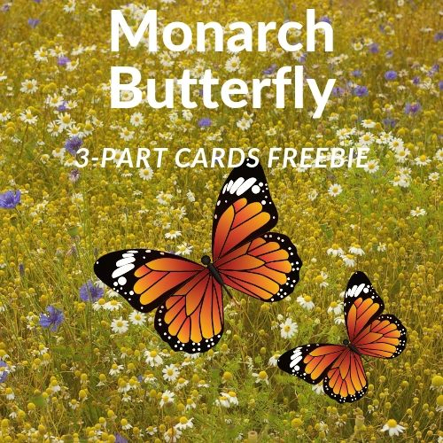 Monarch-butterfly-3-parts-cards-instant-download-free