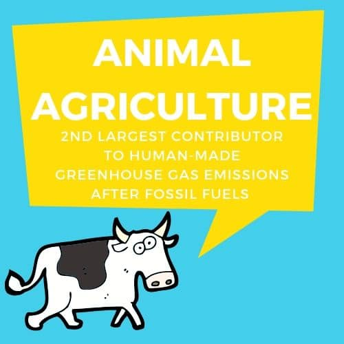 Animal Agriculture is second only to fossil fuels emissions