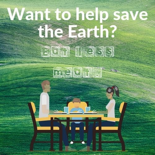 help-save-the-earth-by-eating-less-meat