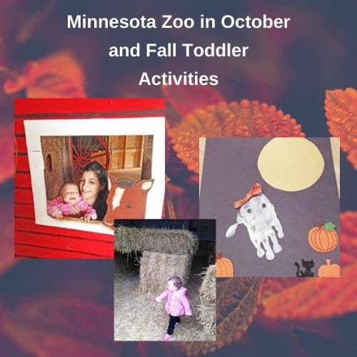 Fall at the Minnesota Zoo and Toddler Activities