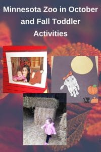 Minnesota-zoo-in-the-fall-at-the-farm-area-plus-toddler-activities-for-fall