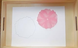 tracing-coasters-to-make-flowers-in-vase-project (5)