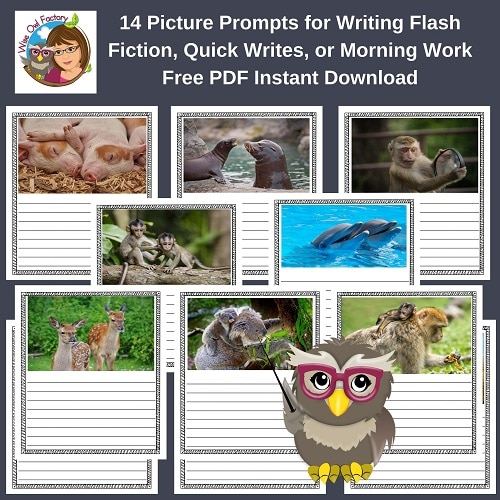 14-Quick-flash-writes-free-instant-download-PDF