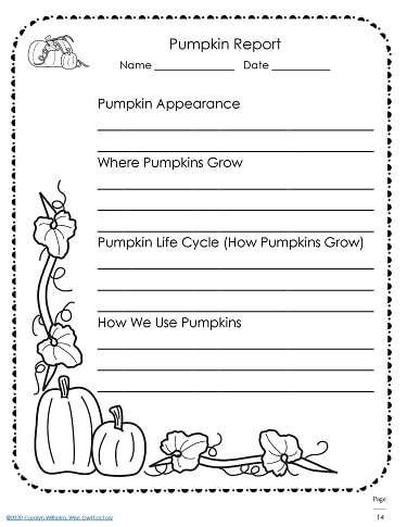 Pumpkin report final writing page
