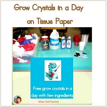 an-easy-way-to-grow-crytals-overnight-with-children