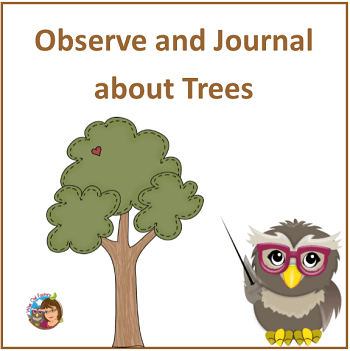 observe-and-journal-about-trees